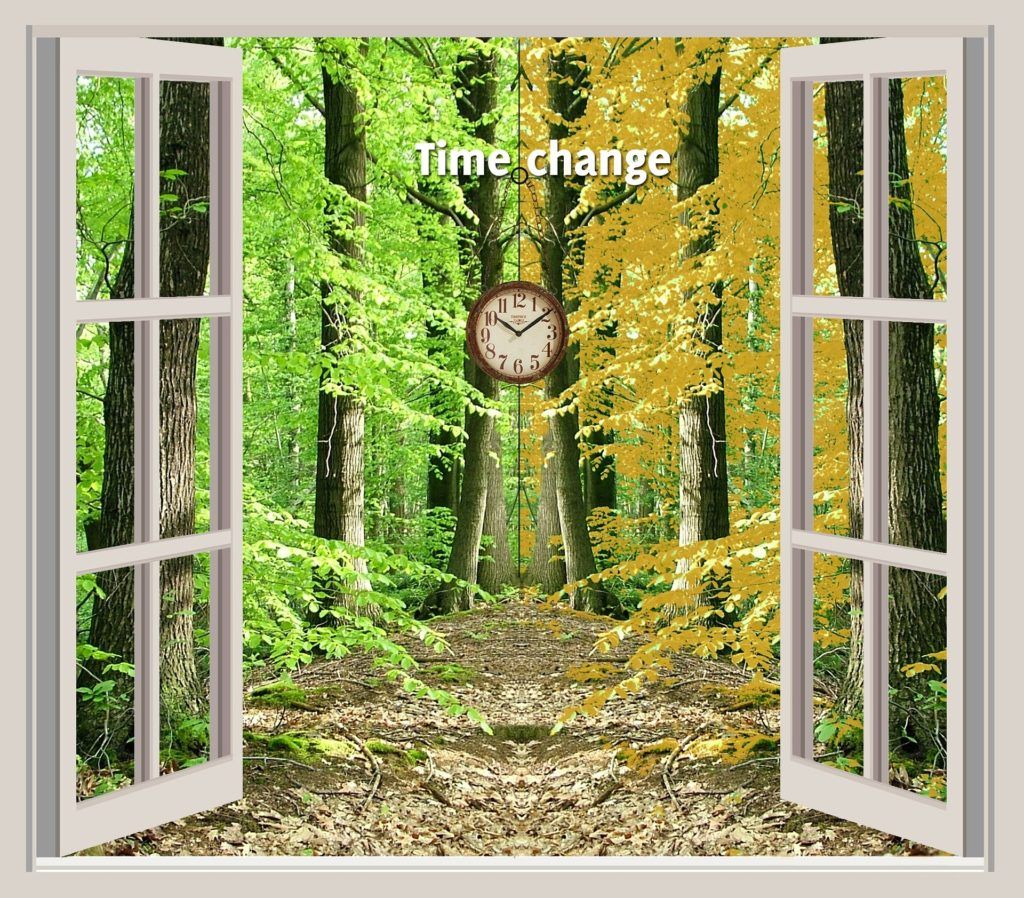 Living In Times Of Change - Understanding What Change Is About